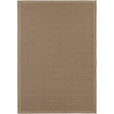 Janessa Brown Indoor/Outdoor Area Rug Rug Size: 710 x 111