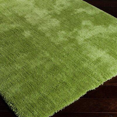 Braun Hand Woven Fern Green Area Rug Rug Size: Runner 23 x 8