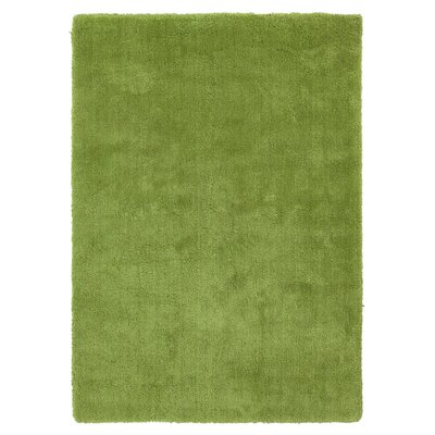 Braun Hand Woven Fern Green Area Rug Rug Size: Rectangle 76 x 96