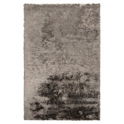 Rosalina Light Gray Rug Rug Size: Rectangle 2 x 3