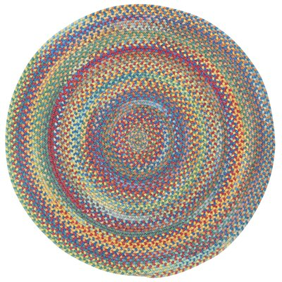 Darwin Bright Multi Colored Straight Edge Mat Rug Size: Round 13