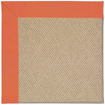 Zoe Machine Tufted Sorrel/Brown Indoor/Outdoor Area Rug Rug Size: Square 8