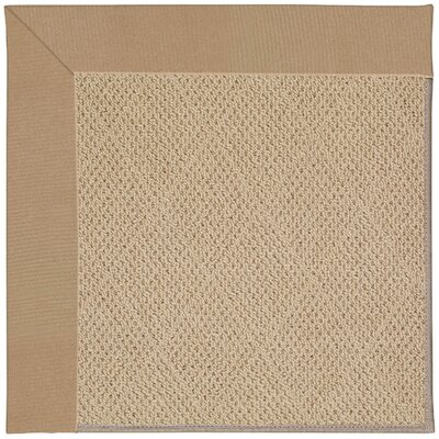 Zoe Machine Tufted Biscuit/Brown Indoor/Outdoor Area Rug Rug Size: Square 10