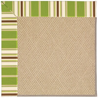 Zoe Machine Tufted Green/Brown Indoor/Outdoor Area Rug Rug Size: Rectangle 5 x 8