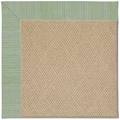 Zoe Cane Wicker Machine Tufted Green Spa/Brown Indoor/Outdoor Area Rug Rug Size: Square 6