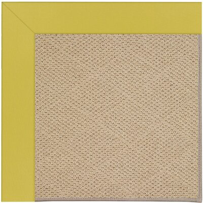 Zoe Machine Tufted Citronella/Brown Indoor/Outdoor Area Rug Rug Size: Square 10