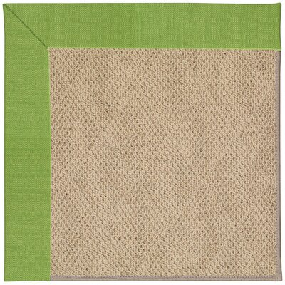 Zoe Machine Tufted Grass/Brown Indoor/Outdoor Area Rug Rug Size: 4 x 6