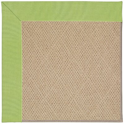 Zoe Machine Tufted Parakeet/Brown Indoor/Outdoor Area Rug Rug Size: 7 x 9