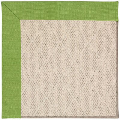 Zoe Light Beige Indoor/Outdoor Area Rug Rug Size: Rectangle 12 x 15