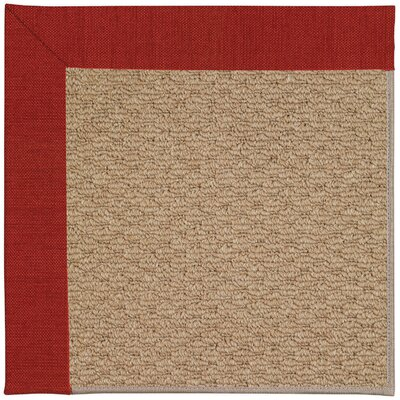 Zoe Machine Tufted Tomatoes/Brown Indoor/Outdoor Area Rug Rug Size: Square 10