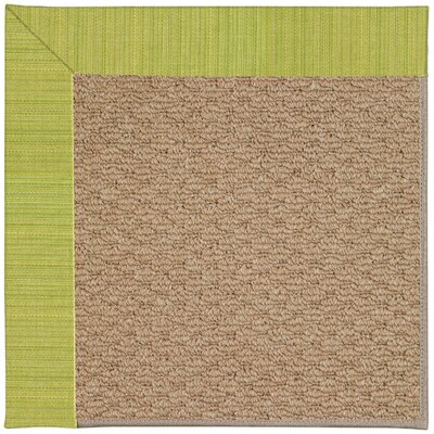 Zoe Machine Tufted Pea Pod/Brown Indoor/Outdoor Area Rug Rug Size: Square 6