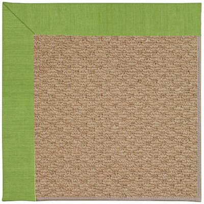 Zoe Machine Tufted Grass/Brown Indoor/Outdoor Area Rug Rug Size: Square 4