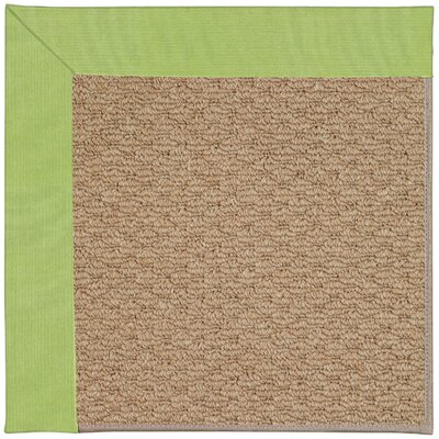 Zoe Machine Tufted Parakeet Indoor/Outdoor Area Rug Rug Size: Square 4