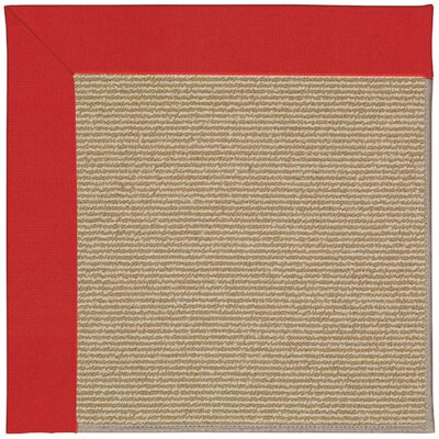 Zoe Machine Tufted Red/Brown Indoor/Outdoor Area Rug Rug Size: 9 x 12