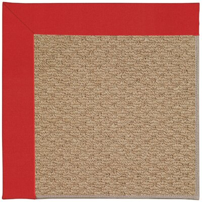 Zoe Machine Tufted Red/Brown Indoor/Outdoor Area Rug Rug Size: 4 x 6