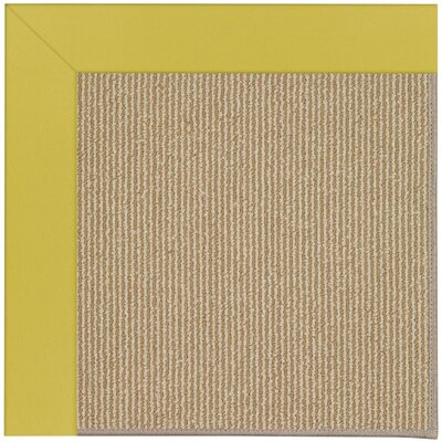 Zoe Machine Tufted Citronella/Beige Indoor/Outdoor Area Rug Rug Size: Square 10