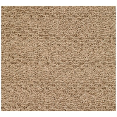 Shoal Machine Woven Indoor/Outdoor Area Rug Rug Size: Square 10