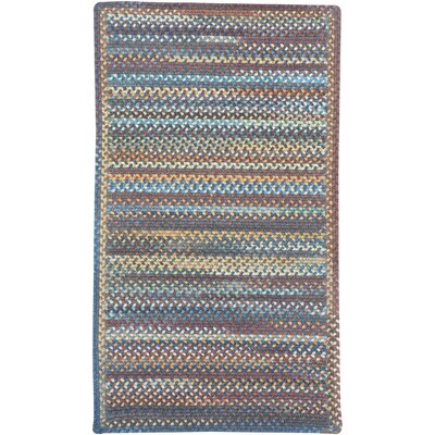 Phoebe Medium Blue Multi Rug Rug Size: Cross Sewn 18 x 26