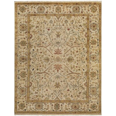 Brandon Hand Knotted Honey Area Rug Rug Size: 36 x 56