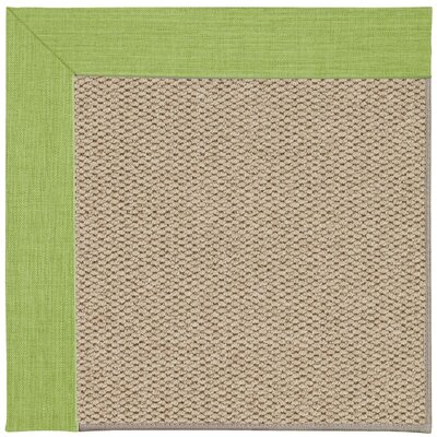 Inspirit Champagne Machine Tufted Green Grass/Beige Area Rug Rug Size: Square 4