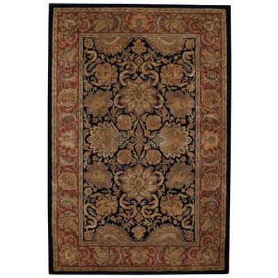 Forest Park Hand-Tufted/Hand-Woven/Hand-Knotted Brown Area Rug Rug Size: 76 x 96