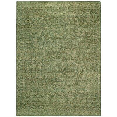 Tonal Trace Green Jade Area Rug Rug Size: 5'6