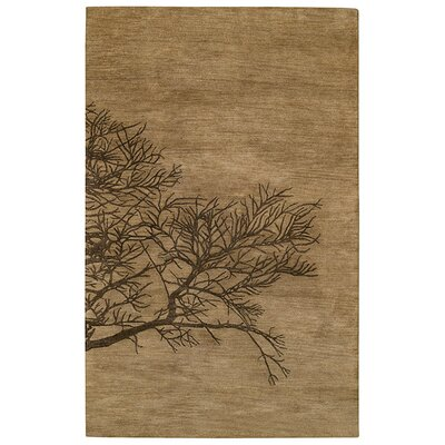 Desert Plateau Tree Bark Shadow Branch Area Rug Rug Size: 5 x 8