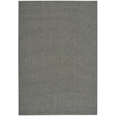 Ridge Coal Indoor/Outdoor Area Rug Rug Size: 53 x 76