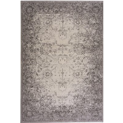 Channel Pearl Indoor/Outdoor Area Rug Rug Size: Rectangle 311 x 56