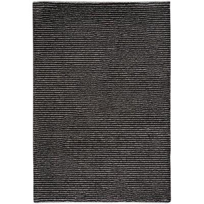 Gravitation Black Area Rug Rug Size: 53 x 76