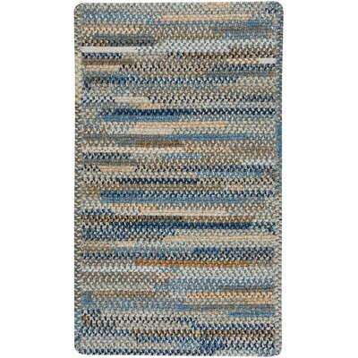 Habitat Blue Area Rug Rug Size: Rectangle 18 x 26