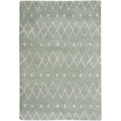 Nador Mint Area Rug Rug Size: 53 x 76