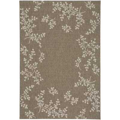 Jacqueline Winterberry Brown Outdoor Area Rug Rug Size: 53 x 76