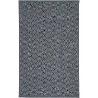 Shiva Coal Indoor/Outdoor Area Rug Rug Size: 4 x 6