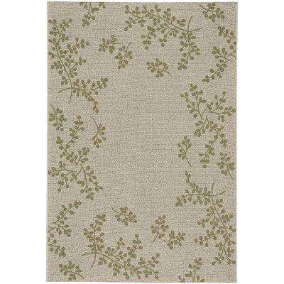 Jacqueline Winterberry Green Outdoor Area Rug Rug Size: 53 x 76