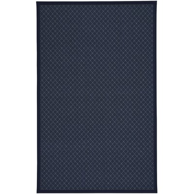 Shiva Blue Indoor/Outdoor Area Rug Rug Size: 7' x 9'