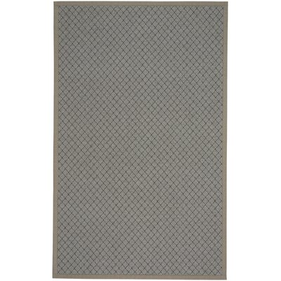 Shiva Gray Indoor/Outdoor Area Rug Rug Size: 8 x 11