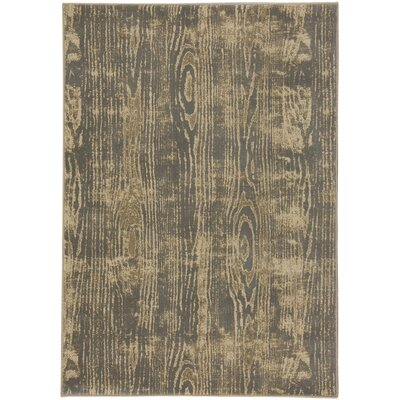 Edvin Beige/Gray Area Rug Rug Size: 710 x 1010