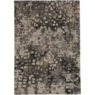 Jasper Cobblestone Coal/Gray Area Rug Rug Size: 5 x 8