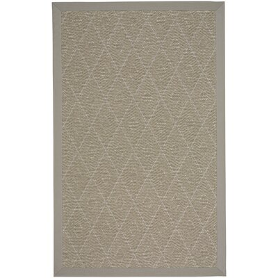 Gresham Braided Tan Buff Indoor/Outdoor Area Rug Rug Size: Rectangle 4 x 6