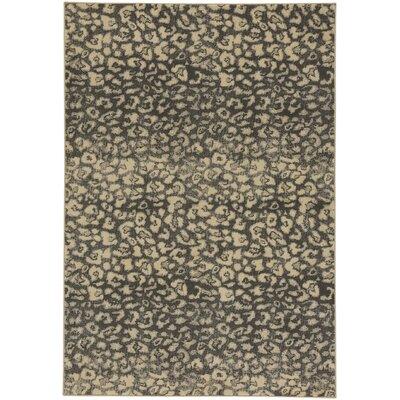 Rhea Coal/Beige Area Rug Rug Size: 53 x 76