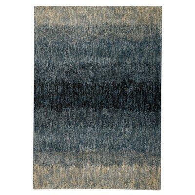 Malia Teal/Beige Area Rug Rug Size: 53 x 76