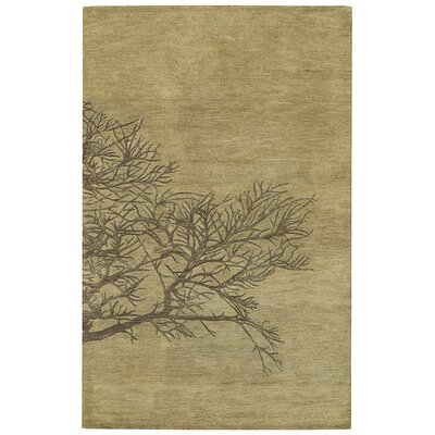 Desert Plateau Green Moss Shadow Branch Area Rug Rug Size: 5 x 8