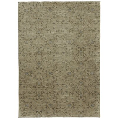 Heavenly Biscuit Green Floral Area Rug Rug Size: 10 x 14