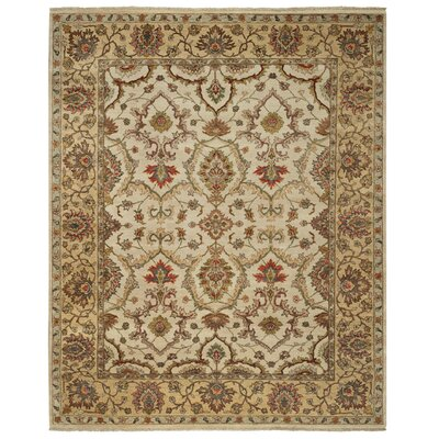 Renown Beige Area Rug Rug Size: Rectangle 5 x 8