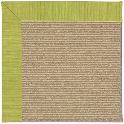 Zoe Machine Tufted Pea Pod/Brown Indoor/Outdoor Area Rug Rug Size: Square 10