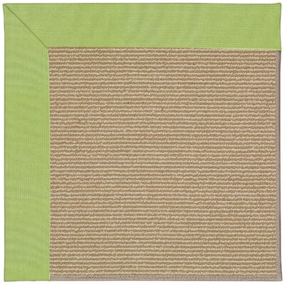 Zoe Machine Tufted Parakeet/Brown Indoor/Outdoor Area Rug Rug Size: 10 x 14