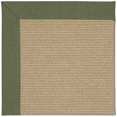 Zoe Machine Tufted Plant Green and Beige Indoor/Outdoor Area Rug Rug Size: Rectangle 10 x 14