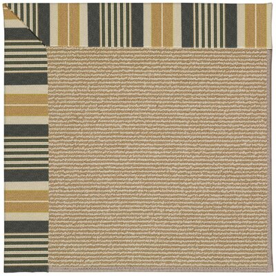 Zoe Black Indoor/Outdoor Area Rug Rug Size: Square 6