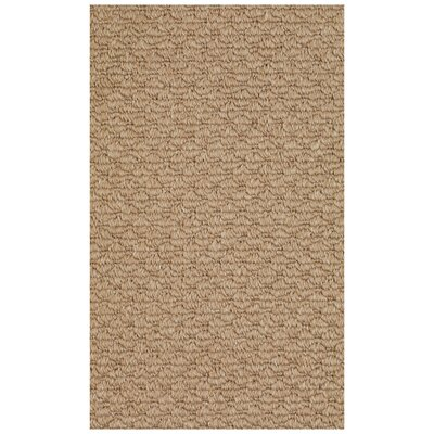 Shoal Machine Woven Indoor/Outdoor Area Rug Rug Size: 4 x 6